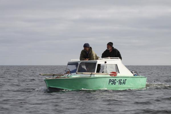 Орнитологическая экспедиция на переходе между островами Онежской губы Белого моря. 2011 год.