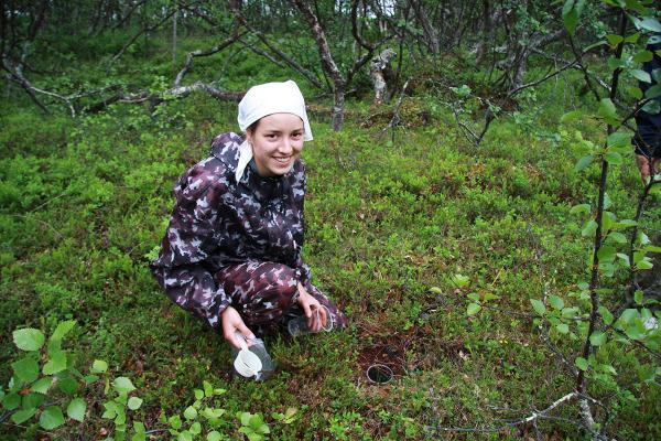 Исследование фауны и экологии жуков-жужелиц. Н.А. Зубрий. 2009 год.