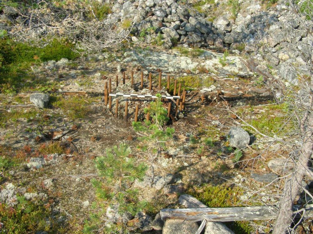 Остатки платформы, на которой крепилось орудие, в районе м. Белужий.
