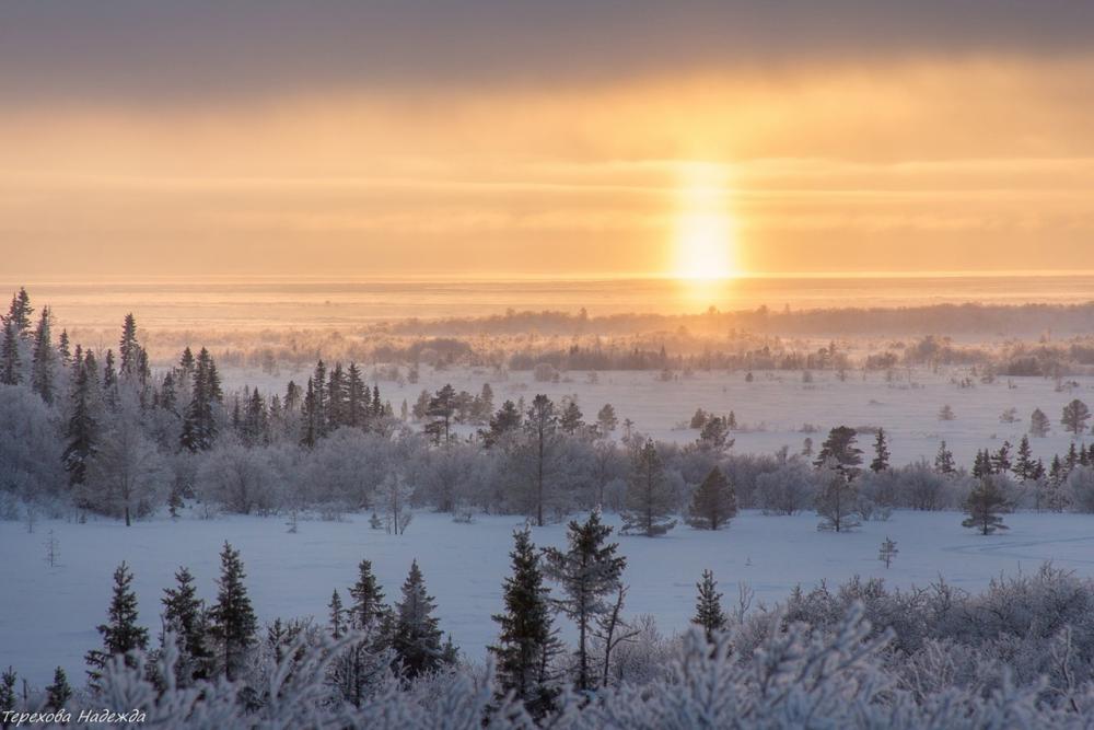 ФОТО: Надежда Терехова