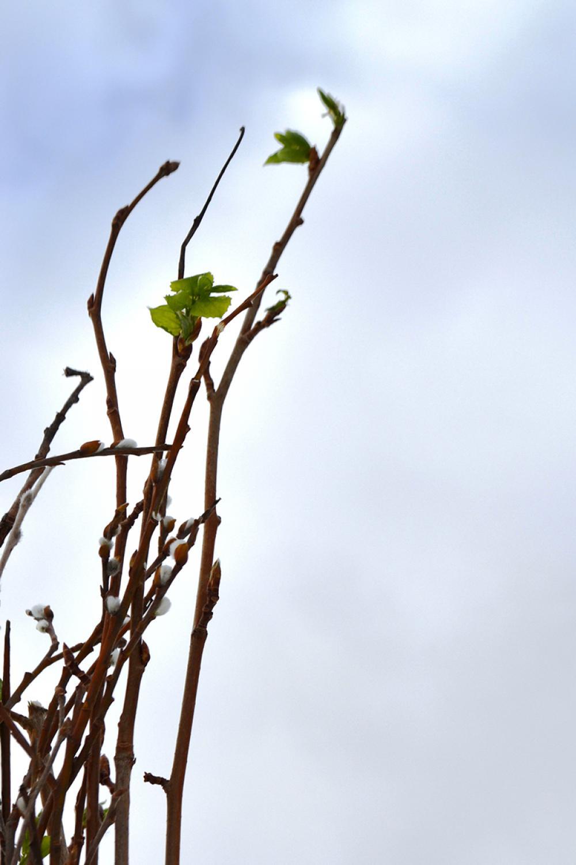 Образ весны – символ Воскресения